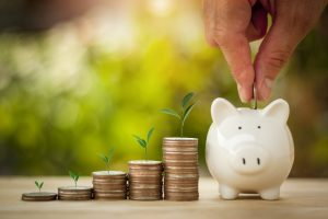 Hand putting coins in a piggy bank for save money with sun light bokeh background and tree growing on coin. Saving Money concept.